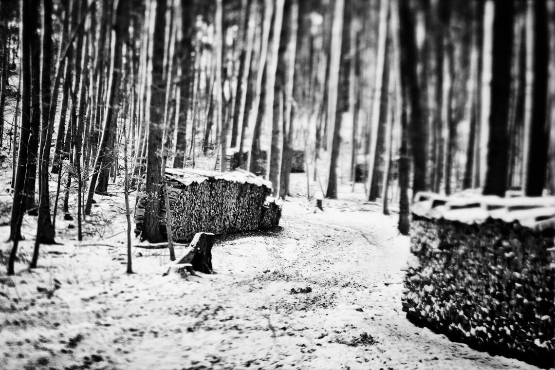 Holzstapel im Schneewald