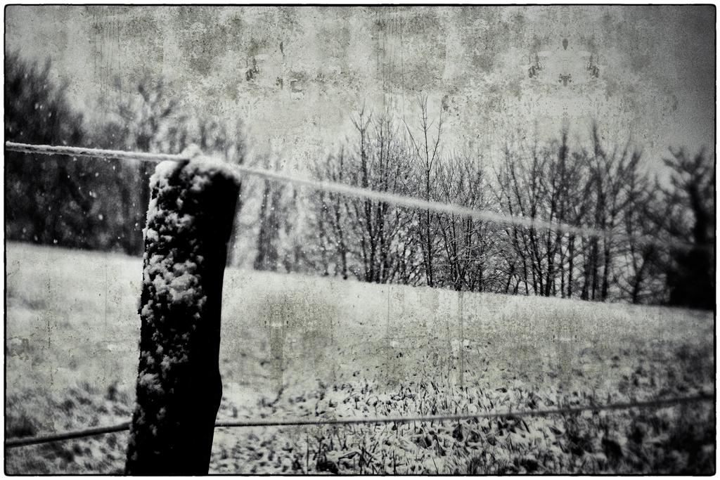 Weidezaun bei Schnee