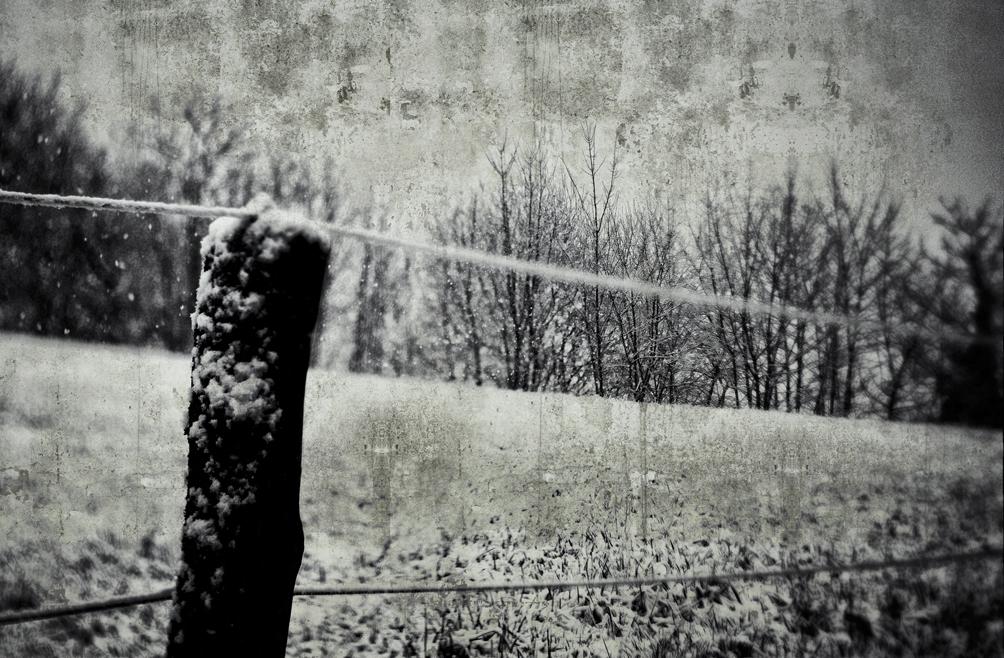 Weidezaun im Schnee