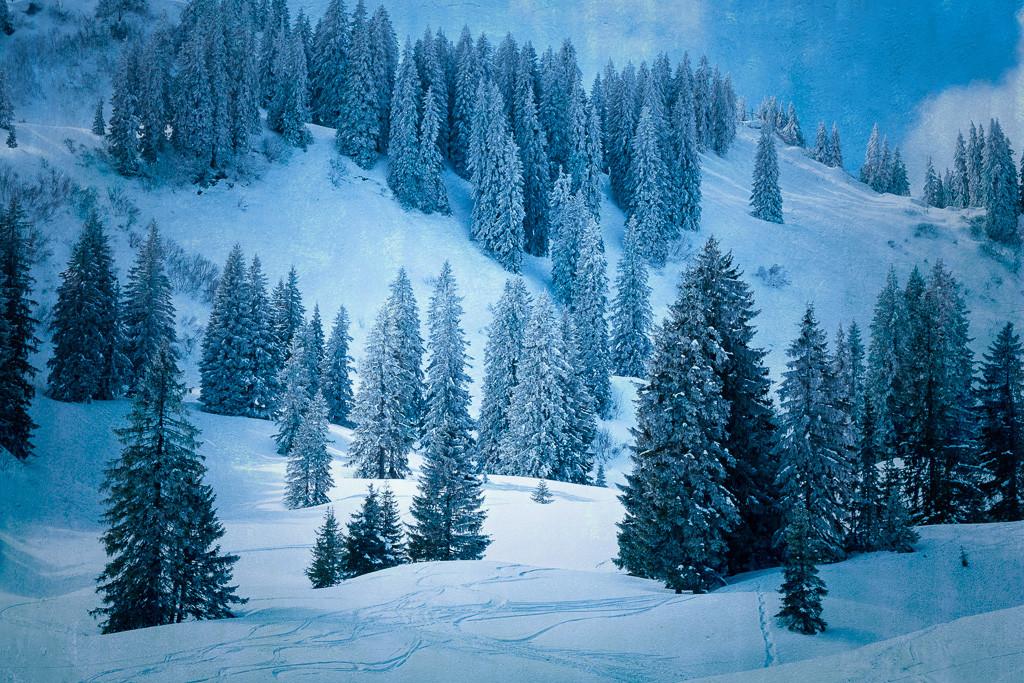 Winter_blau_1