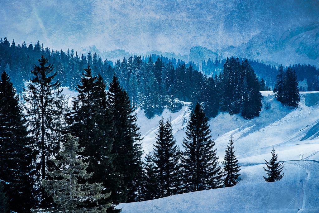Winter_blau_2